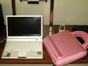 My Asus notebook. Yes, that case is pink.