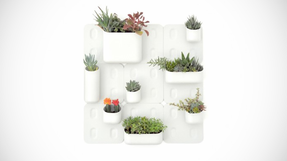 Urban Gardens for Small Spaces