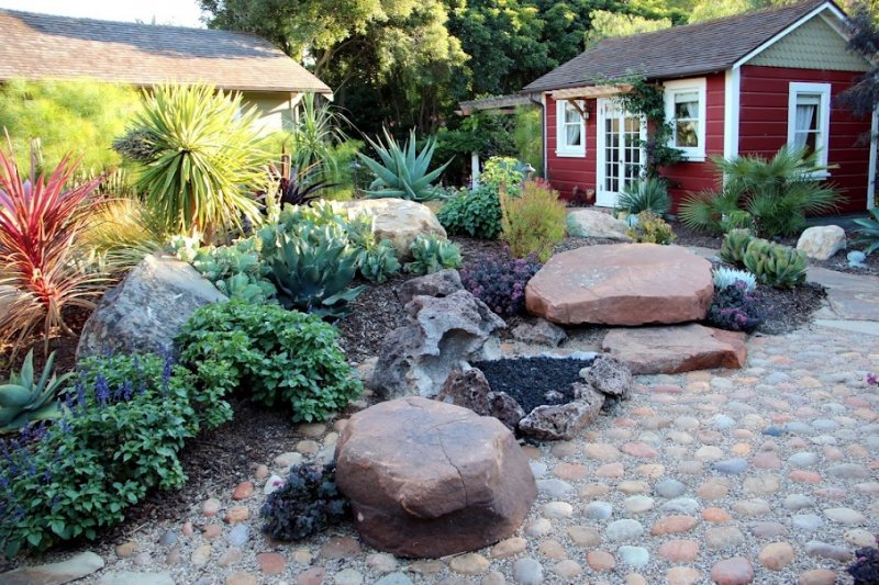 Succulent Rock Garden Ideas Photograph Succulent Garden By