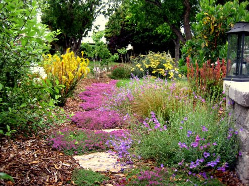 Planning a Waterwise Landscape