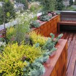 Landscaping a Tiny Patio