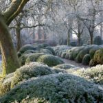 Create an Enchanting Winter Garden Wonderland