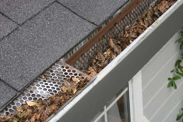 Remove Debris from Your Gutters