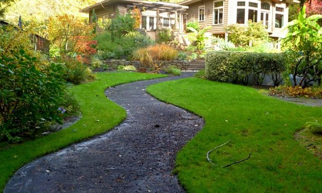 Are You Sure You Know Everything about Landscaping Before You Plan One for Yourself?