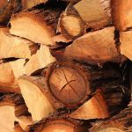 Benefits and Uses of Eucalyptus Timber