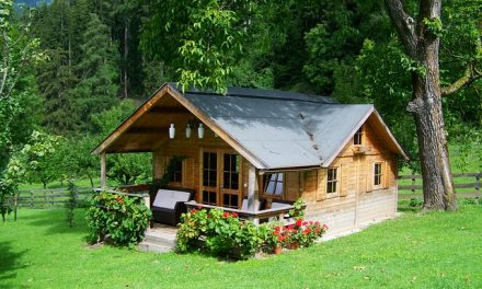 Having a Keen Eye Living in a 'Tiny House'