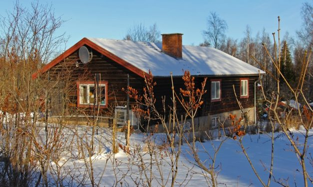 How To Protect Your Roof During the Winter