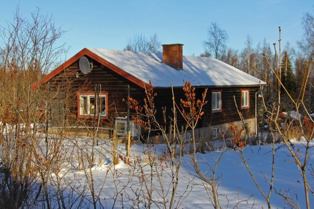 protect your roof in winter