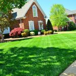 The Reason Why The Correct Lawn Maintenance Matters For Our Environment
