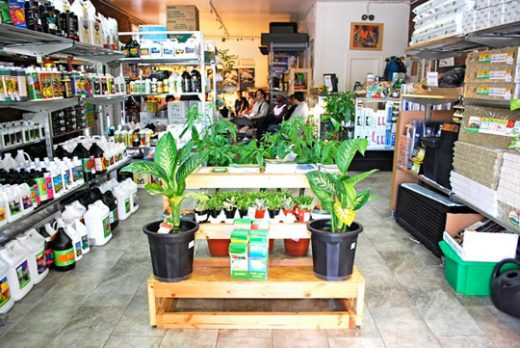 Best Online Hydroponic Store in Canada