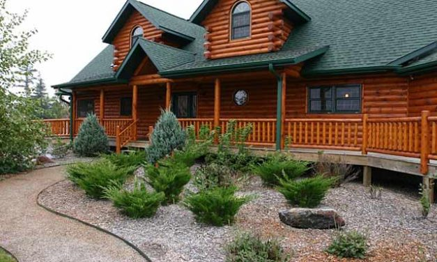 How to Lower Your Home Energy Costs – with Landscaping