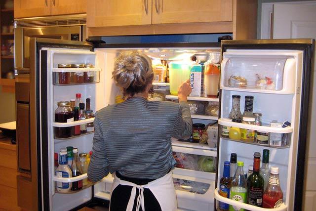 clean Fridge and Freezer