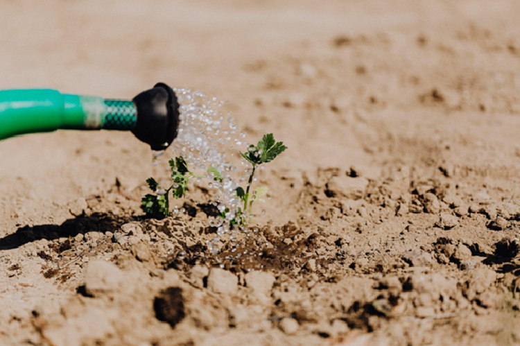 Irrigation Supplier For Landscaping